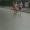Milka und Robert beim Halbmarathon